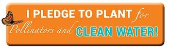Visit the Pledge to Plant website if you pledge to plant for pollinators and clean water!